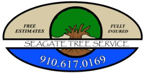 Tree Service Wilmington NC – Tree Removal